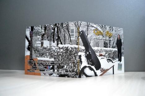 'Ritual de iarnă'. Călin Pop, de la Celelalte Cuvinte, şi-a lansat un album pop-rock cu piese de sezon (FOTO / VIDEO)