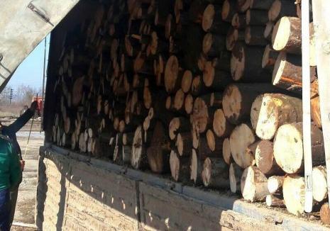 Autoutilitară cu lemne furate, oprită în Tileagd. Şoferul a rămas fără marfă şi s-a ales cu amendă