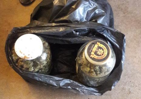 Campionul K1 Adrian Maxim, prins de procurorii DIICOT Oradea cu un kilogram de cannabis. Sportivul a fost arestat şi trimis în judecată (FOTO)