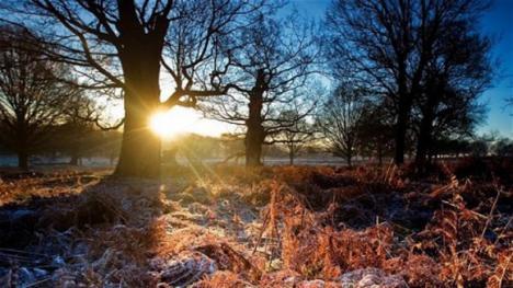 Cum va fi vremea de Crăciun şi Revelion. Prognoza meteo pentru următoarele două săptămâni în fiecare regiune a ţării