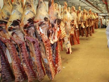 Remorcă încărcată cu carne de porc de peste 140.000 lei, descoperită la Palota