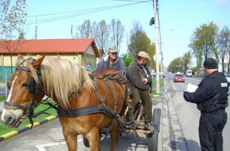 Poliţiştii comunitari au ieşit la vânătoare de căruţaşi