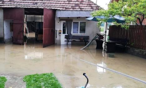 Direcţia de Sănătate Publică: Ce măsuri trebuie să iei pentru prevenirea îmbolnăvirilor în urma inundaţiilor