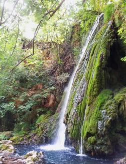 Situl Pădurea Craiului ar putea fi prima destinaţie de ecoturism din Bihor (VIDEO)