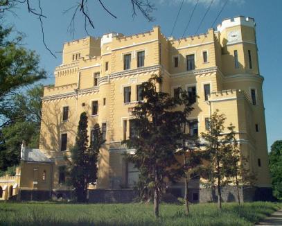 După ce Judeţul l-a refuzat în ciuda preţului de chilipir, Consiliul Local al comunei a decis să cumpere Castelul din Balc