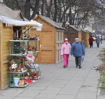Decoraţiuni de Crăciun în Parcul 1 Decembrie