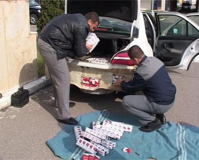 Căţelul infractor: Un transport de ţigări de contrabandă păzite de un dulău, descoperit în Borş (FOTO)