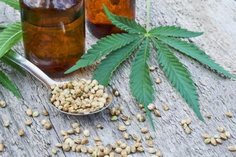 Orădeanul care deţine un magazin cu produse din cannabis, în arest la domiciliu. Avocatul lui pretinde că afacerea este 100% legală