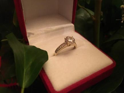 Vrei să fii soţia mea? Cerere în căsătorie inedită, în Cetatea Oradea (FOTO)