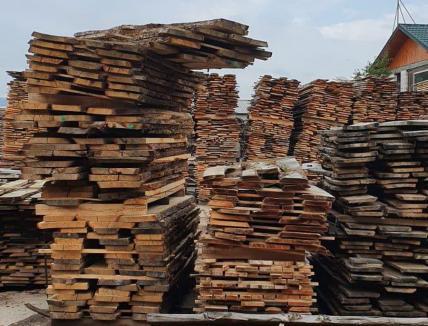 Cherestea de răşinoase, confiscată de poliţişti de la o firmă din Bihor