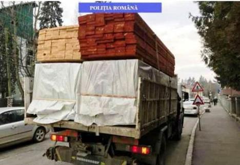 Un TIR întreg cu cherestea a fost confiscat în Borş!