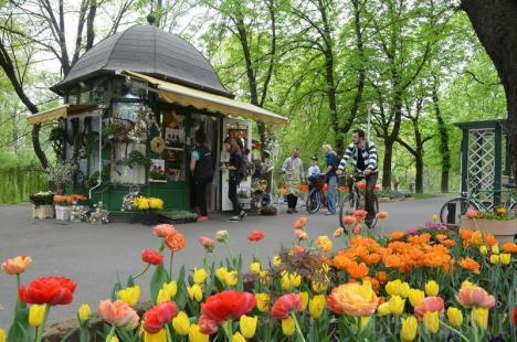 S-a terminat! Primăria Oradea a reziliat contractul cu firma lui Marius florarul pentru chioşcul din Parcul Libertăţii