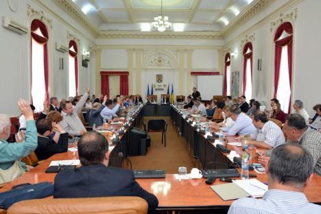 Strategie cu găuri: Consiliul Judeţean Bihor a plătit degeaba 90.000 de euro pentru strategia judeţului!