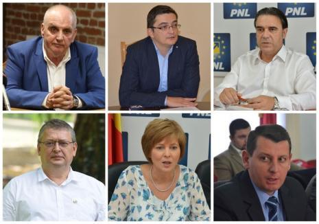 PNL Bihor a închis listele aspiranţilor la Parlament cu Bolojan şi Birta. Vezi cine sunt toţi candidaţii!