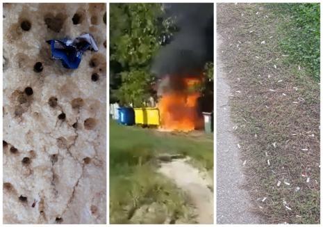 """Fumuri în curtea şcolii. Ce pagube produc liceenii fumători ai Colegiului Naţional """"Avram Iancu"""" Ştei (FOTO / VIDEO)"""
