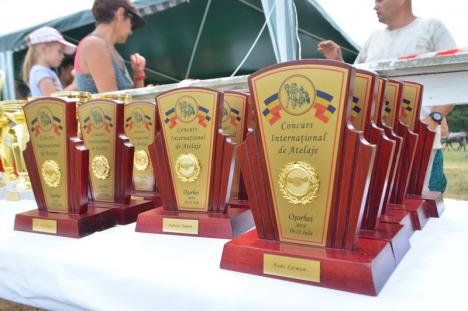 Cel mai mare concurs de atelaje din România a atras la Oşorhei concurenţi din patru ţări (FOTO / VIDEO)