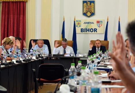 Merg la Tribunal: Procesul între Consiliul Judeţean şi PNL Bihor, declinat de Judecătoria Oradea