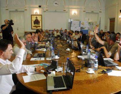Consilierii locali hotărăsc joi bugetul oraşului pe 2011