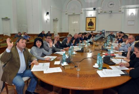Consiliul Local: Banii necheltuiţi pe lucrări vor fi alocaţi cofinanţării proiectelor europene