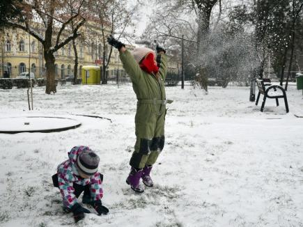 Revin zăpezile! Meteorologii anunţă lapoviţă şi ninsoare în Crişana
