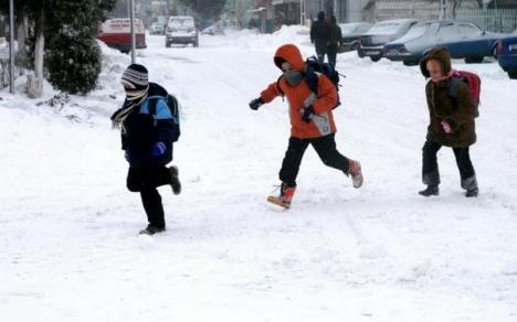 """Copiii s-au întors la şcoală, medicii îi controlează """"prin sondaj, în unele unităţi"""" pentru a descoperi dacă au semne de gripă"""
