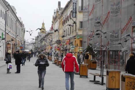 Angajaţii din Bihor şi-au reclamat patronii mai puţin în cursul anului trecut, dar cu motive întemeiate