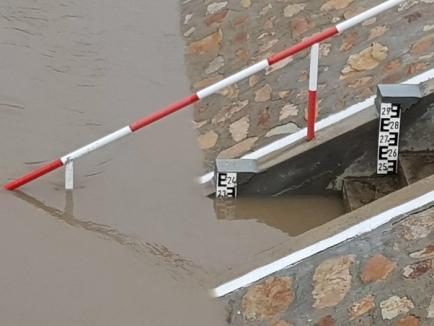 Din cauza ploilor, au fost depăşite cotele de apărare pe Crişul Repede şi Crişul Negru (FOTO)