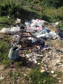 Pescarii reclamă: Malurile Crişului Negru din Beiuş sunt doldora de gunoaie (FOTO)