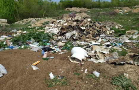 Ape murdare: Primarii din Bihor trebuie să cureţe râurile şi pârâurile de gunoaie (FOTO)