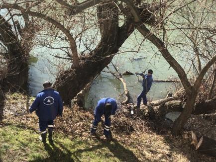 Curăţenie în Crişul Repede: ABA Crişuri a început igienizarea cursurilor de apă (FOTO)
