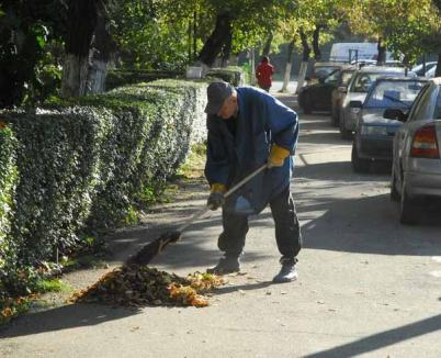 Beneficiarii de ajutor social apţi de muncă vor trebui să facă curăţenie în oraş