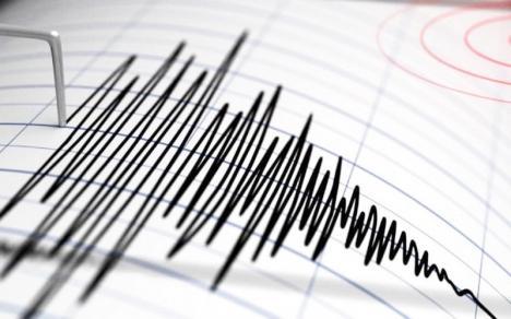 L-aţi simţit? Cutremur cu magnitudinea de 3 grade pe scara Richter în Bihor