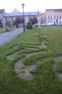 Atac la gazon: Un vandal a aruncat cu ierbicid peste iarba din scuaruri (FOTO)