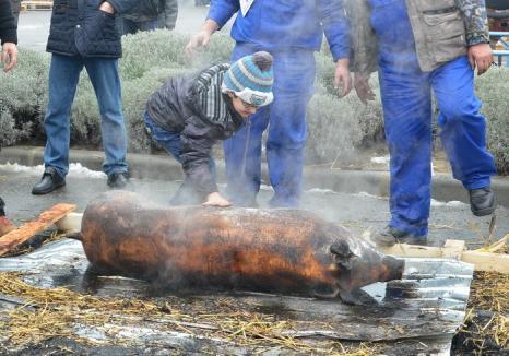O nouă ediţie a festivalului 'D'ale porcului': vor participa 24 de primării