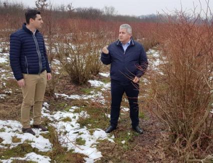 O condiţie esenţială pentru a beneficia de fondurile europene: Finalizarea cadastrării gratuite a terenurilor agricole