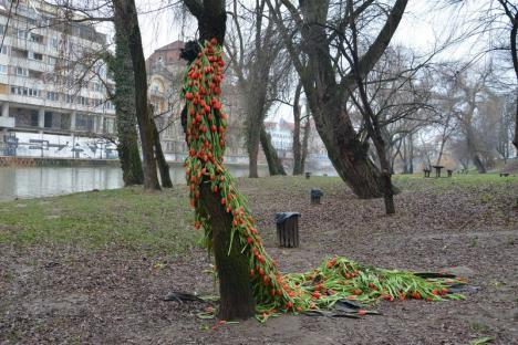 Flamenco pe mal: Copacul 'îmbrăcat' în lalele s-a transformat într-o dansatoare (FOTO)