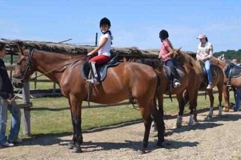 Poftiţi în şa! Cu mic, cu mare, bihorenii se pot relaxa călărind prin natură, la unul dintre cele trei centre de echitaţie din judeţ (FOTO)