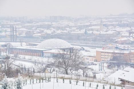 Orădenii ies la plimbare pe dealul Ciuperca, acoperit de zăpadă (FOTO/VIDEO)