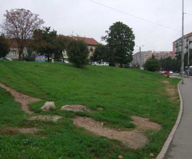 CAO va construi o fântână pe dealul de la intersecţia bulevardelor Dacia şi Decebal