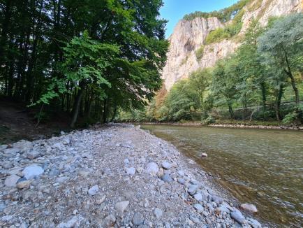 Drumul nimănui: Drumul construit ilegal în defileul Crişului Repede a fost promis în campanie de Ilie Bolojan (FOTO / VIDEO)