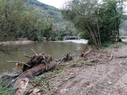 Ecologiştii acuză: O rezervaţie naturală distrusă cu buldozerul, în Bihor! ABA Crişuri pretinde că se fac decolmatări, de grija... trenurilor (FOTO)