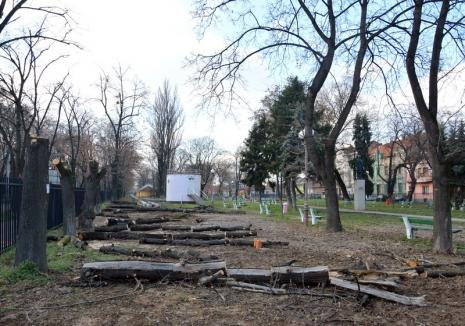"""Şeful Gărzii de Mediu despre defrişarea Parcului Bălcescu: Vom sancţiona Primăria şi o vom obliga să întreţină spaţiile verzi """"pe lege"""""""