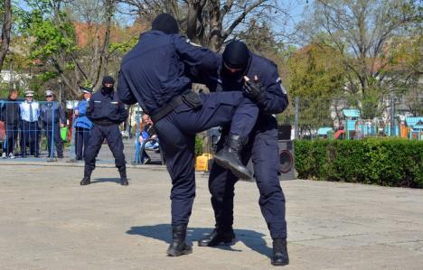 Jandarmii bihoreni, la lecţii de autoapărare