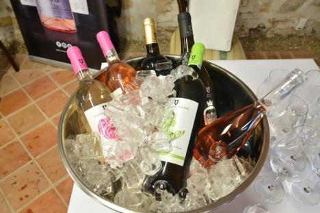 A început Salonul Millésime: E raiul iubitorilor de vinuri, în Cetatea Oradea (FOTO)