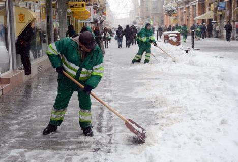 Primăria Oradea a prelungit cu doi ani contractul de salubritate încheiat cu RER Vest