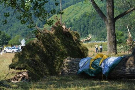 Cod roşu în Bihor! Consecinţele vijeliei de la Bulz, soldată cu moartea unui om şi rănirea altor 16, puteau fi uşor evitate (FOTO / VIDEO)