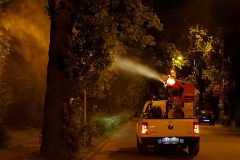 Primăria anunţă o nouă etapă de dezinsecţie împotriva ţânţarilor şi muştelor în Oradea