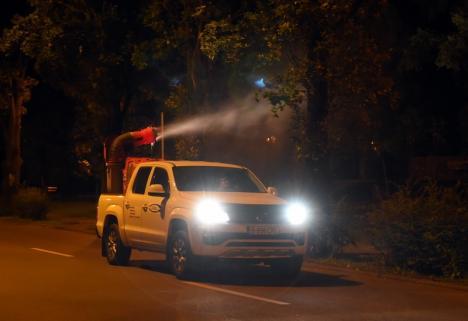 Încă o dată: Primăria Oradea anunţă o nouă acţiune de dezinsecţie