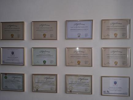 Administraţia Domeniului Public Oradea, în topul companiilor profitabile