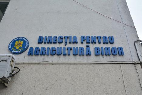 Campanie cu tălpi: De ce l-a prins ANI în incompatibilitate pe UDMR-istul de la Direcţia Agricolă Bihor